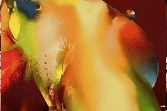 BOOGIE BIRD OF THE THIRD  2008 30X40 SPRAY PAINT ON CANVAS  ORIGINAL ARTWORK BY CHOR BOOGIE
