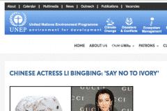 UNITED NATIONS ENVIRONMENTAL PROGRAM 1 | CHOR BOOGIE ART